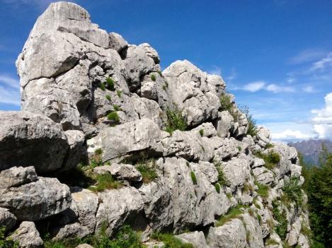 """Affiormento dolomitico (dolomia a Conchodon) risalente a 200 milioni di anni fa'. """"Malascarpa"""", secondo la tradizione locale, per via della forma a zoccolo di caprone, simbolo del diavolo, che ricordano i fossili in esso presenti."""